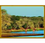 Ndumo Game Reserve is one of Africa's oldest and most scenic parks